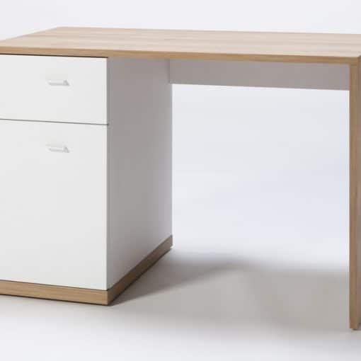 תמונה: שולחן מחשב מעוצב דני